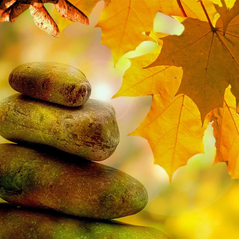IONS_meditation-264508_1920-800x800-1